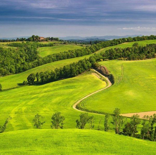 Как перевести землю из ЛПХ в ИЖС